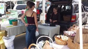 springfield-vt-farmers-market-11